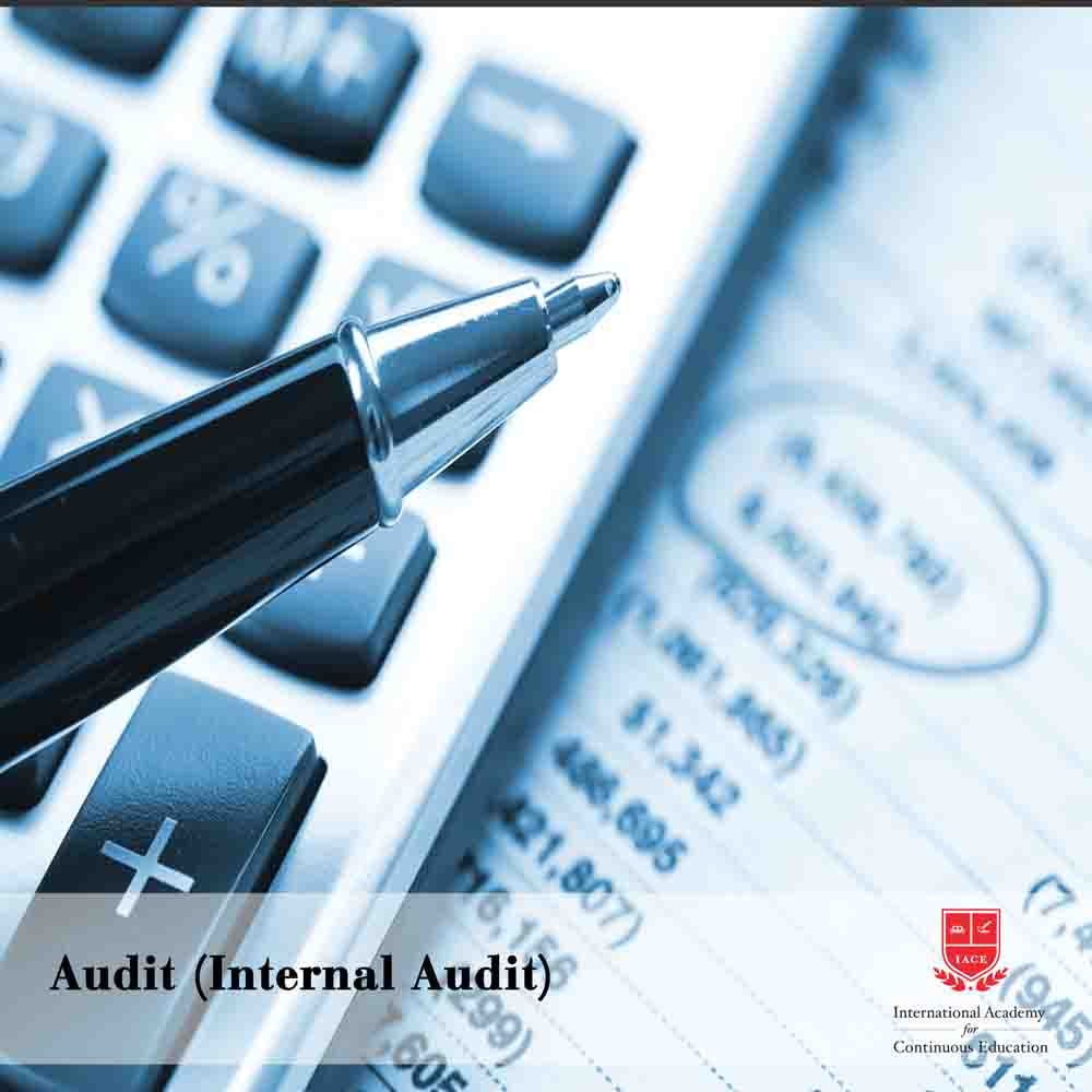 Audit (Internal Audit)
