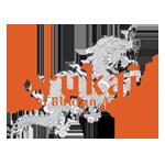 DrukAir_logo