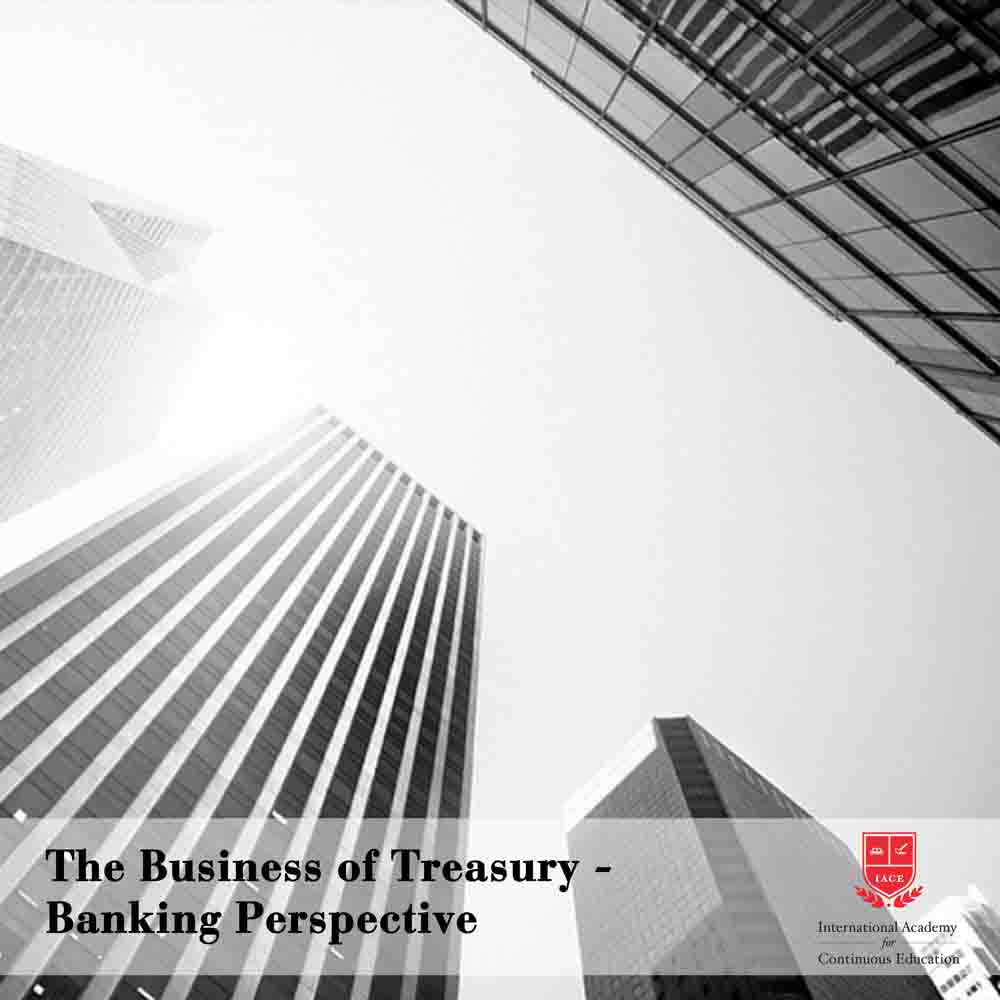 The Business of Treasury - Banking Perspective
