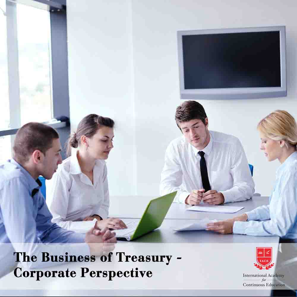 The Business of Treasury - Corporate Perspective